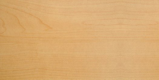 Drewno klon